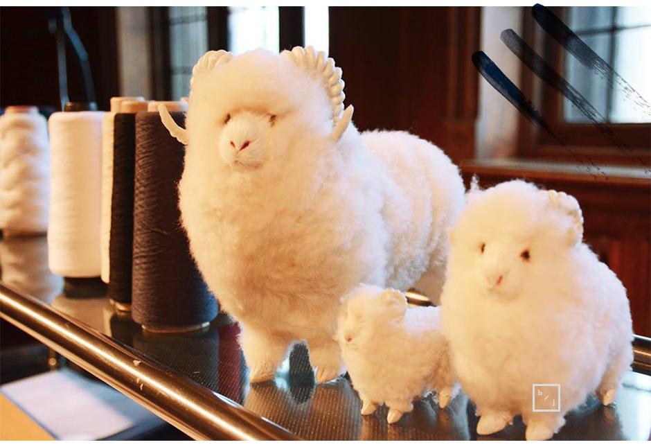 Le-Blogue-De-Julie-Campagne-pour-la-laine-ça-va-de-soi-1